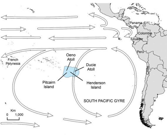 Arrows pointing counter-clockwise around Henderson Island indicate the direction of major oceanic currents that carry the trash.