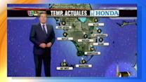 Cat Interrupts Live Weather Report
