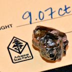 A 33-year-old Arkansas man found a 9-carat diamond at a state park he's been visiting since he was a child