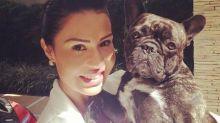 "Gracyanne Barbosa lamenta morte de cachorro: ""Mais um anjo se foi"""