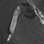 Grounded Mauritius ship operator apologises for oil leak