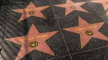 Pro-Trump Artist Covers Hollywood Walk Of Fame With Trump Stars In Protest