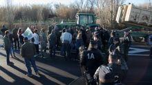 Agricultores fazem manifestações na França preocupados com Mercosul