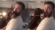 Please Direct Your Attention To Chris Evans Cuddling A Puppy In A 'Knives Out' Sweater