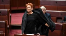Brandis stands up for decency after burqa stunt – but that's exactly what Hanson wanted | Katharine Murphy