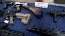 Americans own nearly half world's guns in civilian hands: survey