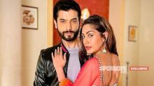 Naagin 5 Jodi Surbhi Chandana And Sharad Malhotra To Romance Again- EXCLUSIVE DEETS INSIDE