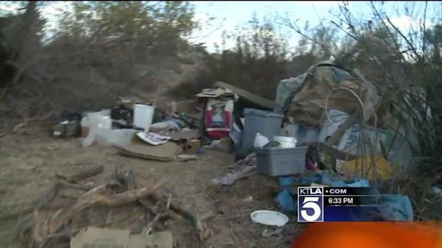 Homeless Man Living in Makeshift Camp Mauled by Mountain Lion