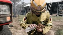 The touching story behind this viral photo of Queensland firefighter cradling a puppy
