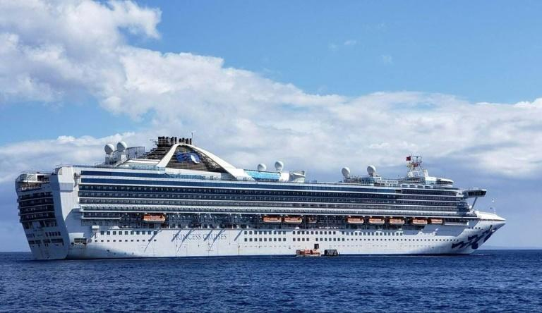 This handout photo taken and released by Carolyn Wright shows the Grand Princess cruise ship during a cruise to Hawaii in February 2020 (AFP Photo/Handout)