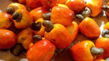 13 comidas que pueden ser peligrosas para la salud