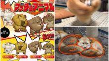 日本「爆肌動物」出扭蛋 「旋轉大隻柴」好想買