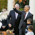 Dad jokes and gobbling birds: A brief history of Barack Obama's Thanksgiving turkey pardons