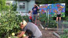 Inner-city neighbourhood transforms vacant land into thriving community garden