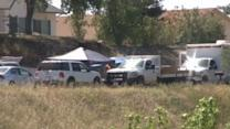 Girl, 8, Stabbed to Death in Home