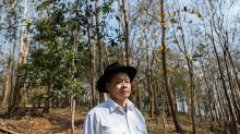 Bank CEO Prefers Saving Trees to Running His Empire