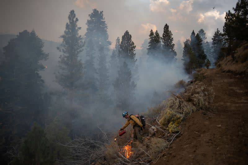 Firefighter takes part in firing operation on sidelines of Brattain Fire in Fremont National Forest in Paisley, Oregon