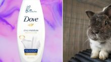 Unilever Announced Its Support of a Global Ban on Animal-Tested Cosmetics