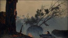 Waldbrände im brasilianischen Amazonas: Verheerendster Juni seit 13 Jahren