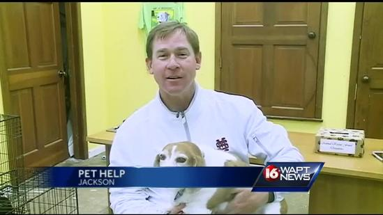 MSU baseball coach stops by ARF
