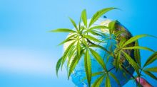 Global Marijuana Sales to Grow 38% to $16.9 Billion in 2019