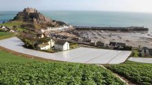 Brexit: Jersey Royal potatoes 'could be left rotting in fields' due to lack of EU workers