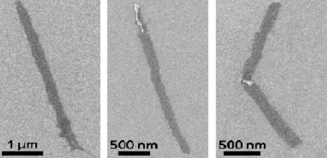 Graphene nanoribbons / Rice University