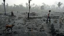 Greenpeace kritisiert Mercosur-Abkommen mit Aktionen in 25 Städten