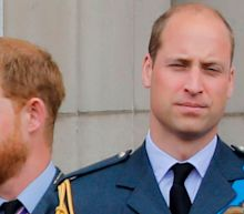 Princes William and Harry will not walk shoulder to shoulder at Duke of Edinburgh's funeral