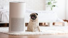 El purificador de aire: la nueva obsesión 'tech' del hogar