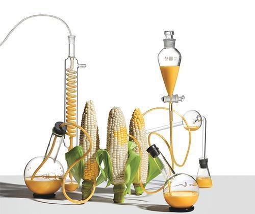 the gmo and biotechnology debate 2 the gene technology act – invitation to public debate the norwegian biotechnology advisory board stortingsgata 10, 0161 oslo, norway +47 24 15 60 20 post@bioteknologiradetno.