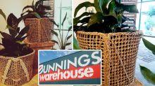 Bunnings $5 designer doormat hack perfect for plant lovers