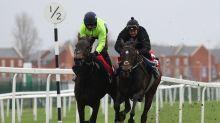 Nicky Henderson confirms Aidan Coleman as Champion Hurdle winner Epatante's jockey this season