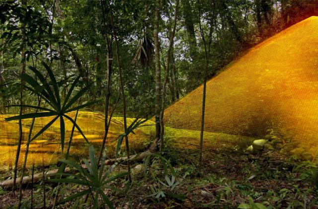 LiDAR reveals Mayan mega city hidden in Guatemalan jungle