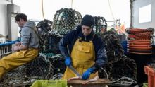 Brexit: UK has lowered demands on fish catches, says EU