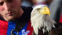 Charlton fan 'attempted to punch Crystal Palace's eagle mascot' during League Cup tie, court told