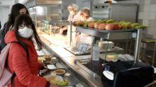 Menus végétariens dans les cantines scolaires : près des trois quarts des communes appliquent la loi Egalim dans le primaire