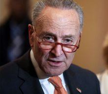 Senate Republicans Block Schumer's Attempt to Subpoena White House Witnesses, Docs