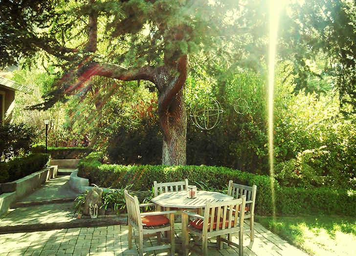 How to Create a Backyard Oasis (Without Breaking Your Budget)