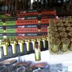 Gun shop owners say California's new ammo law is not ready to be implemented