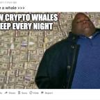 Blockchain Bites: DeFi Meets NFTs, TSLA Beats Bitcoin in Volatility, Uniswap Breaks $2B