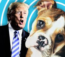 Omarosa tweet raises the question: What is it about Trump and dogs?