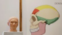 Scientists reconstruct skeleton of elusive, pre-historic human