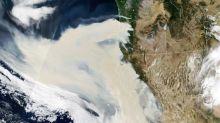 Kalifornien meldet sieben weitere Tote bei schlimmsten Waldbränden der Geschichte