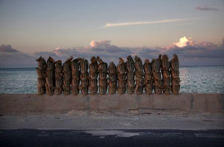 Newly-made sandbags sit on a wall on a causeway that connects the town of Bairiki and Betio on South Tarawa in the central Pacific island nation of Kiribati, in this May 25, 2013 file photo. REUTERS/David Gray