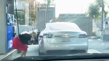 Driver is fuelled into thinking all-electric Tesla needs refilling at petrol station