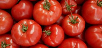 Why you'll be paying more for tomatoes soon