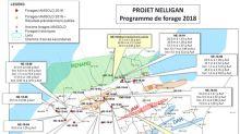 IAMGOLD publie des résultats de forage positifs supplémentaires de son programme de forage 2018 au projet aurifère Nelligan, au Québec