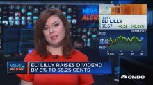Eli Lilly raises dividend by 8%