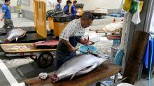 Tóquio tem novo mercado de atum após fechamento do mítico Tsukiji